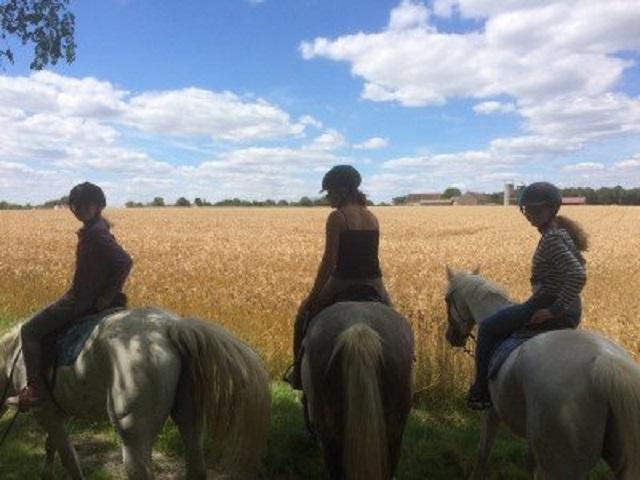 Image balade a cheval